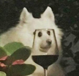 SmoczyFarmer's Profile Picture