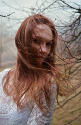 Beauty in the wind by Arryja