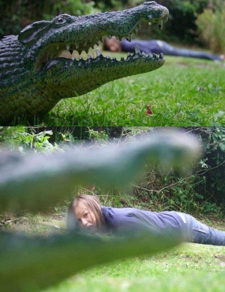 Crocodile In My Park by treetrollop
