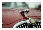 Jaguar 3.8 Litre