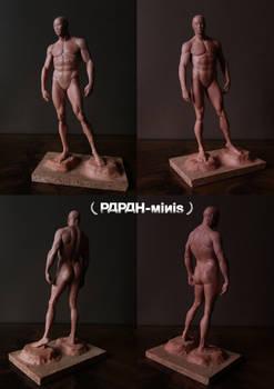 Male anatomy figure 1M WIP, 24cm