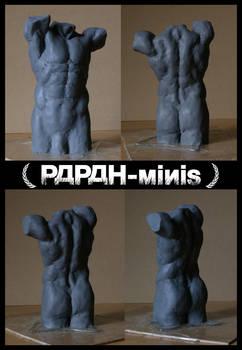 Male Anatomy torso protoplasti WIP, 16cm
