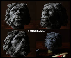 Prehominid race bust detailed protoplasti, 8cm