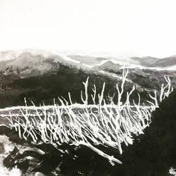 Inktober 27th bleak woodland by rskrakau