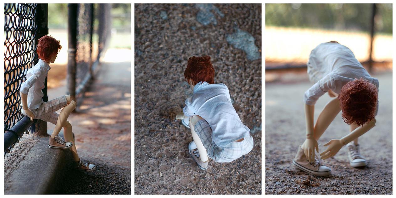 alfie in the park I by Arckaya