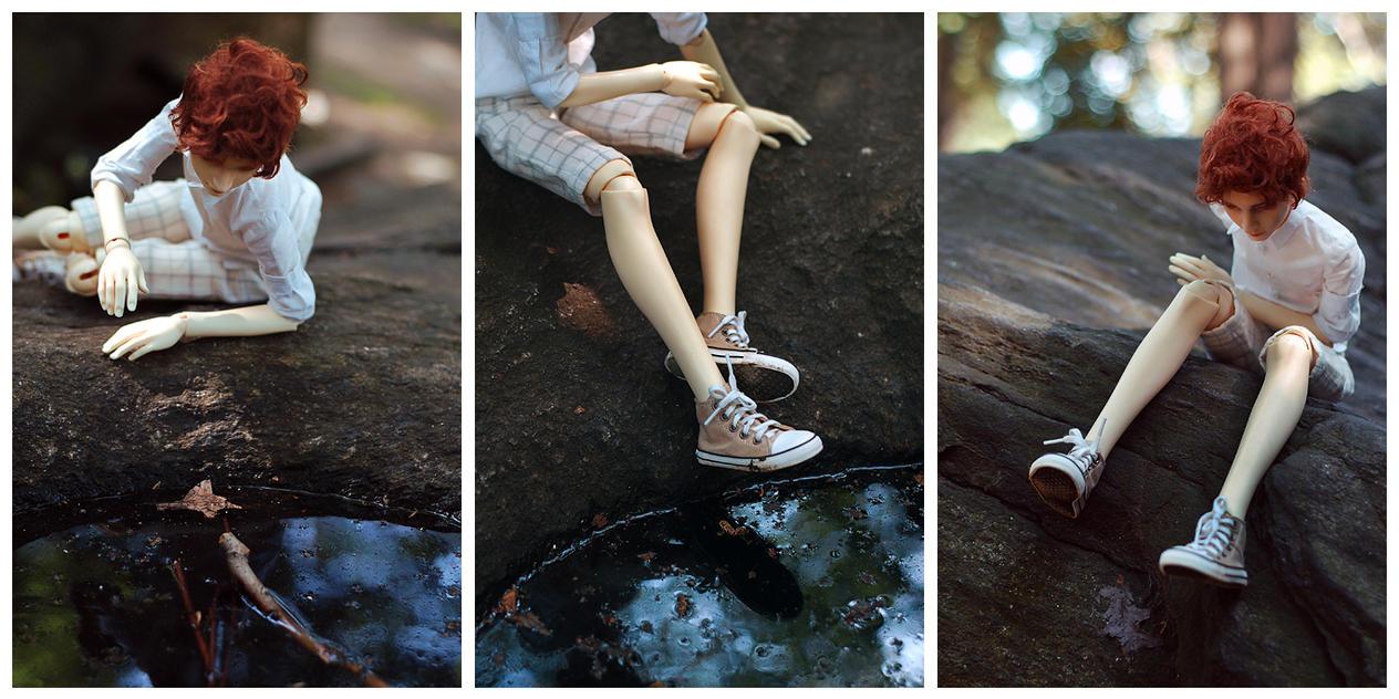 alfie in the park II by Arckaya