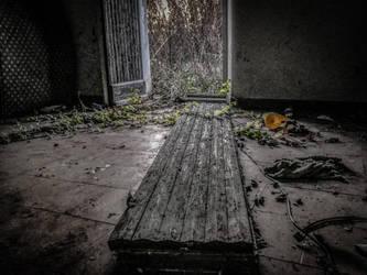 Door by Meffy05