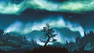 Ancient Witness - Skyrim