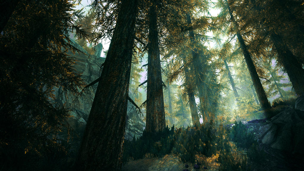 Deep in The Woods - Skyrim by WatchTheSkies45