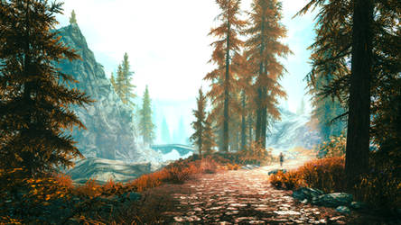 Red Forest - Skyrim by WatchTheSkiies