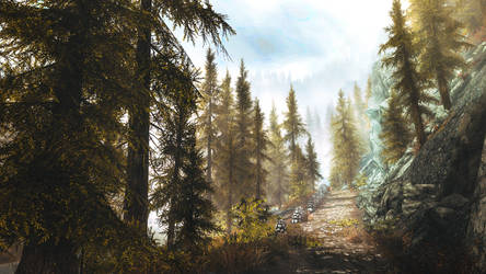 The Road Goes Ever On - Skyrim by WatchTheSkiies