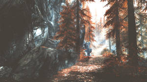 On the Long Road Home - Skyrim