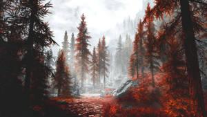 Blood Forest - Skyrim