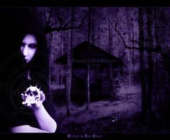 .Witch of the Dark Forest. by darkcryptorium