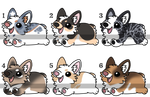 Corgi Adopts - 3/6 OPEN by InkAndBoneAdopts