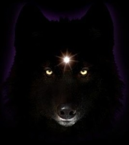 WolfHaunt's Profile Picture