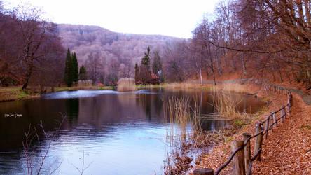 Lake - Spring in Winter