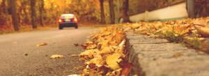 Yellow Autumn # DE