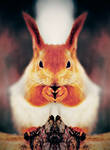 squirrel-killer
