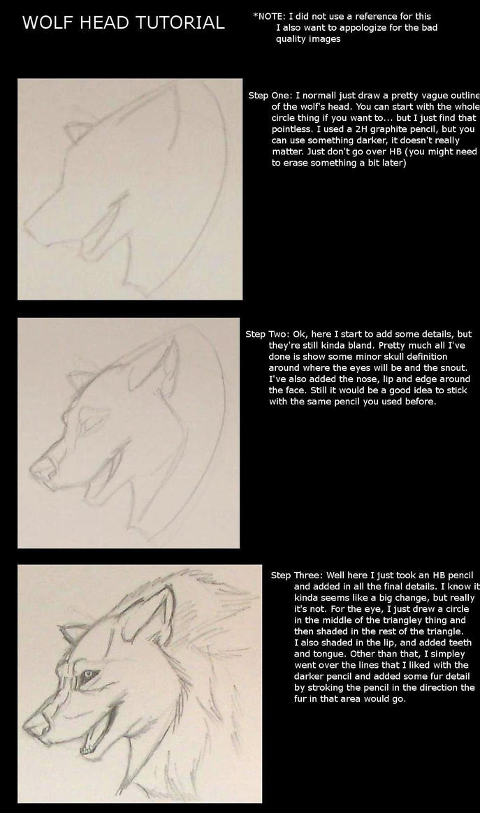 Wolf Head Tutorial by Amaya38 on DeviantArt