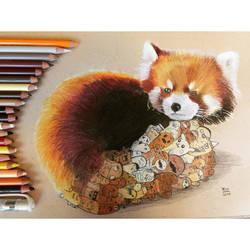 Red Panda Doodle by VinceOkerman