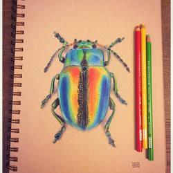 Colorful Beetle by VinceOkerman