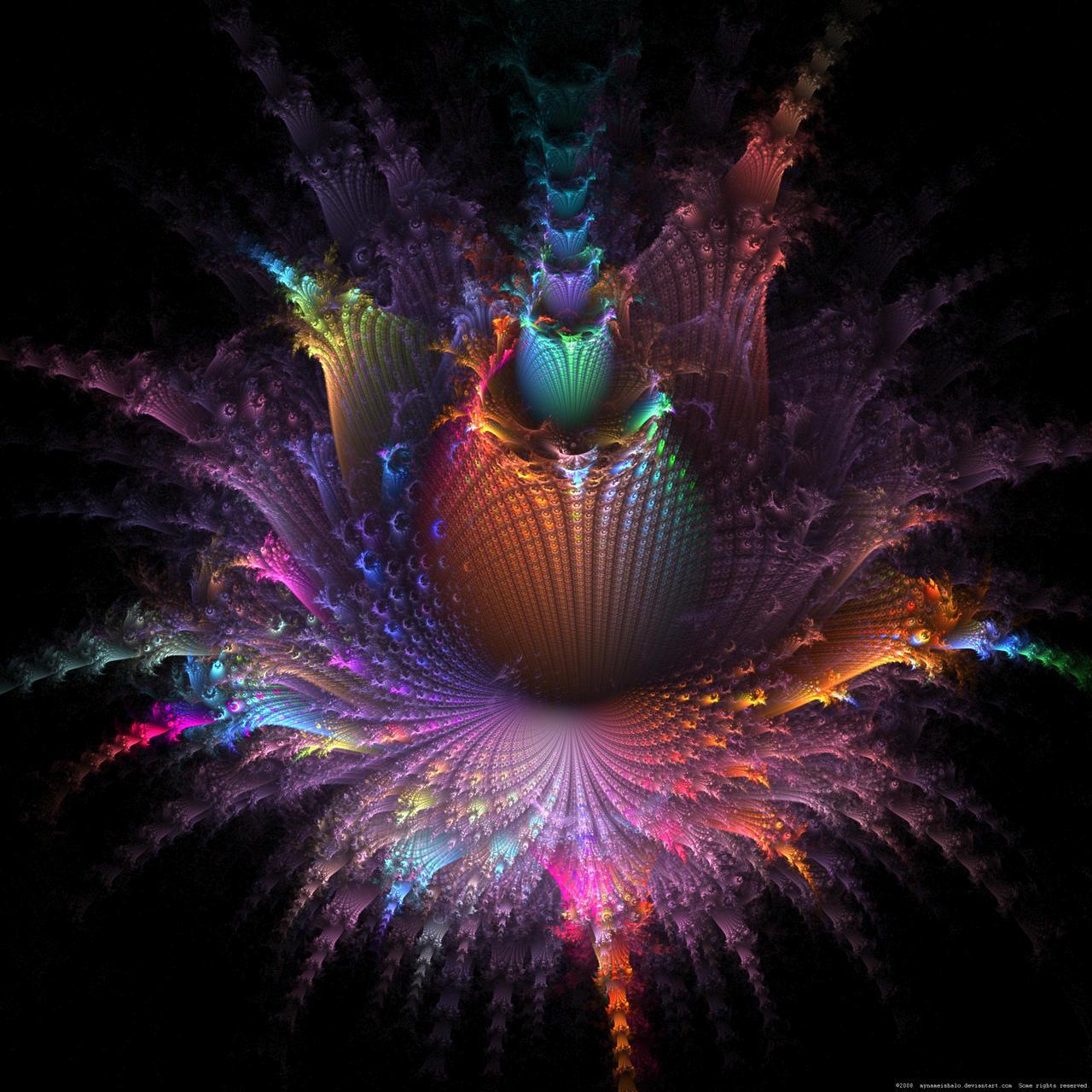 Fleur D apo by mynameishalo dans Divers Fleur_D__apo_by_mynameishalo