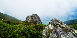 Rocks by Man90Ray