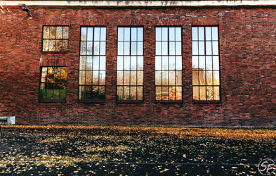 Windows by Man90Ray