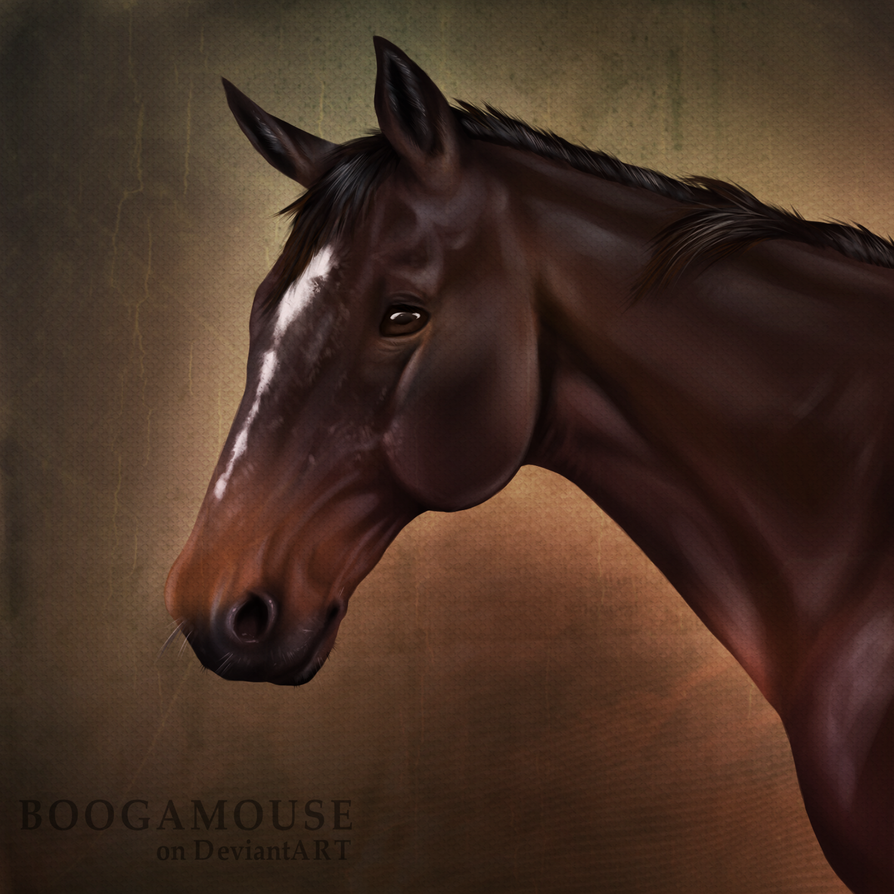 Mr. Dougal by BoogaMouse