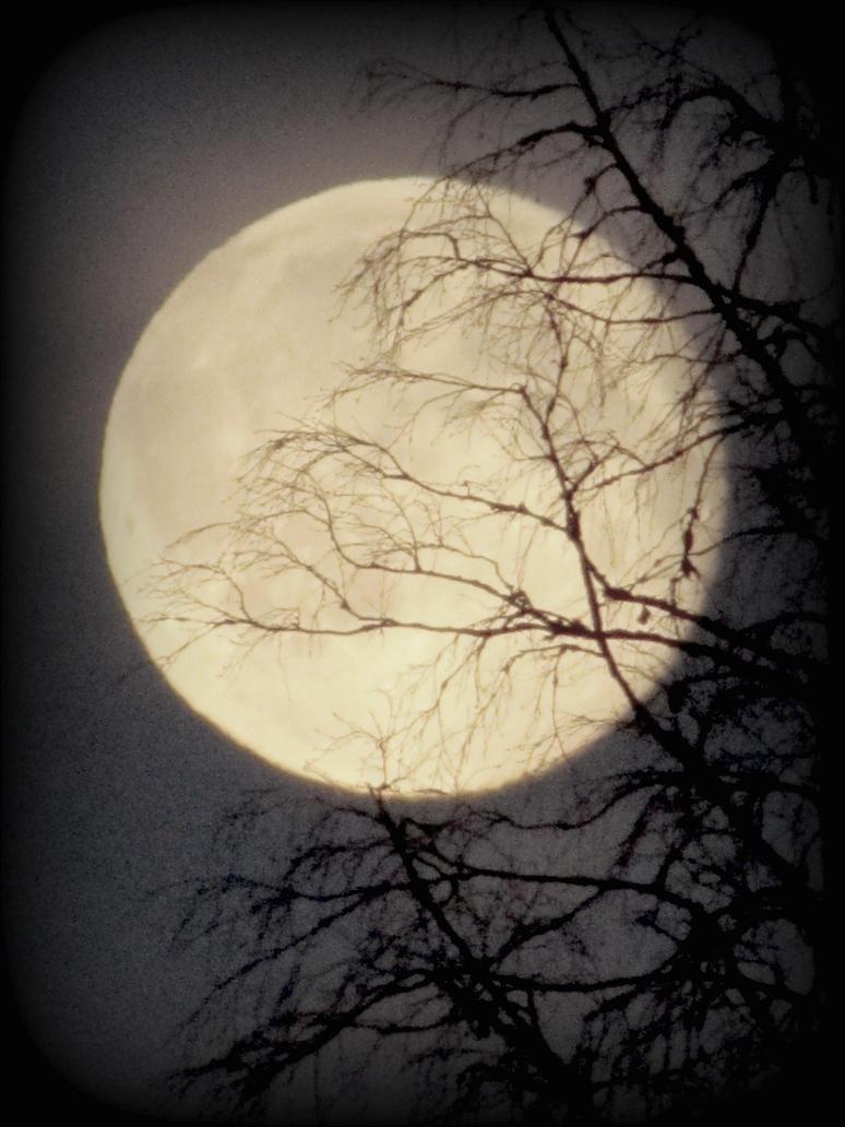 the halloween moon by Riferthy on DeviantArt