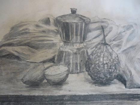 Lesson 4 - Another still life in coal