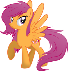 Scootaloo by rainbownspeedash