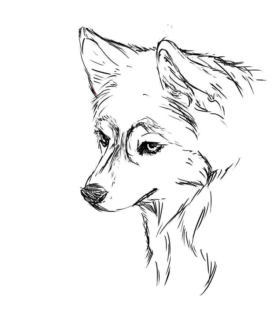 husky coloring pages printable | husky by Inw55 on DeviantArt