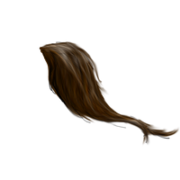 Horse Tail png by peachesrox-stock