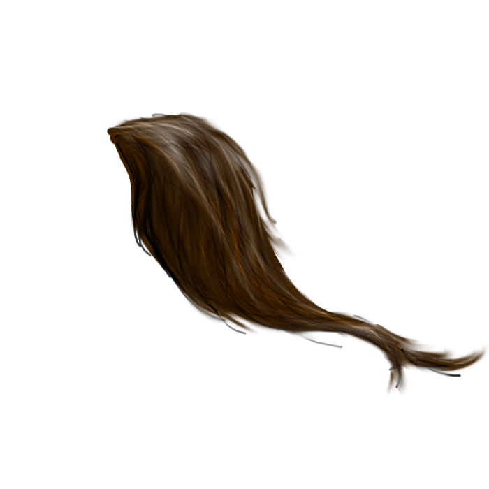 http://fc09.deviantart.net/fs70/f/2011/193/9/a/horse_tail_png_by_peachesrox_stock-d3nivep.png