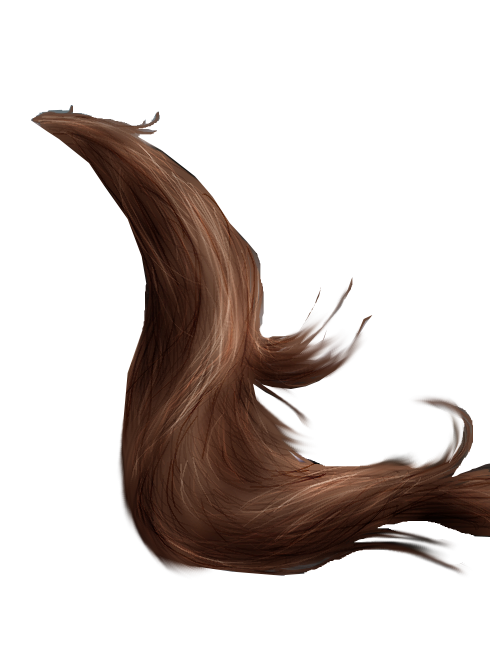 horse tail png 2 by peachesrox stock on deviantart star student of the week clipart star student clipart