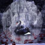 .: Seasons Of Black :. by NatiatVII