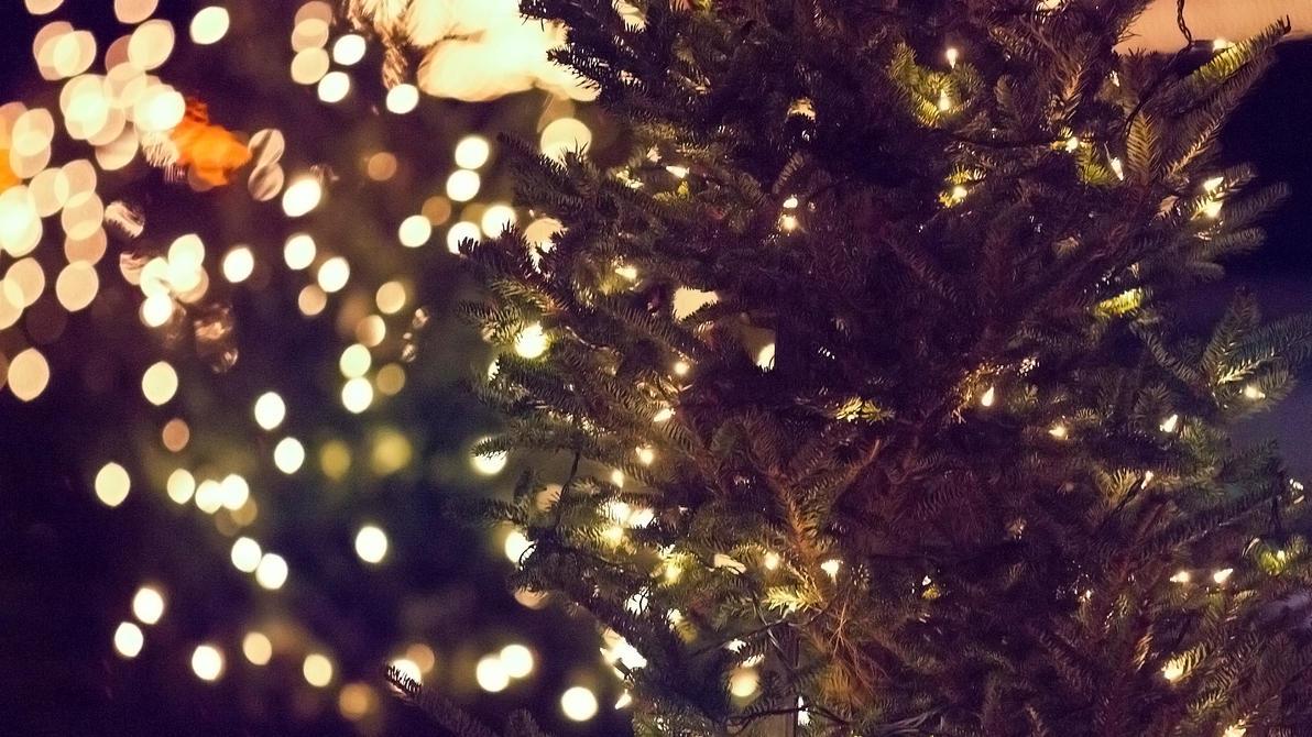Christmas Tree by jakelauer