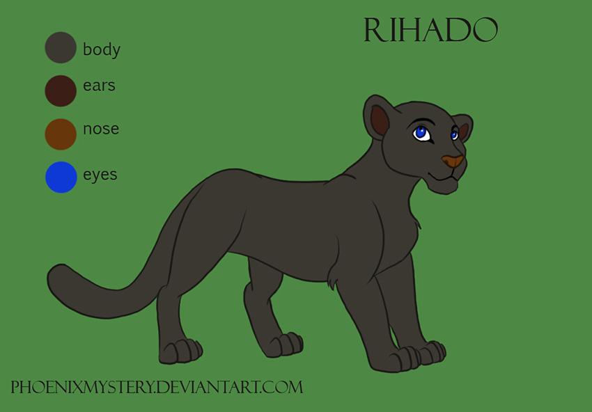 Rihado-character sheet by PhoenixMystery