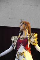 Princess Zelda              Twilight Princess by ivettepuig