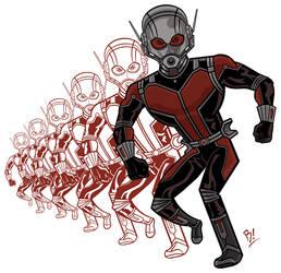 ANT-MAN by BeeBoyNYC