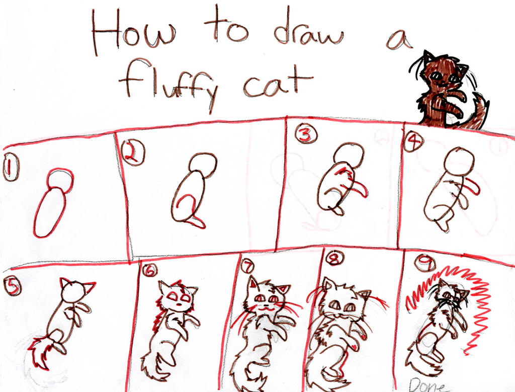 how to draw fluffy cat step by step by brambleice on