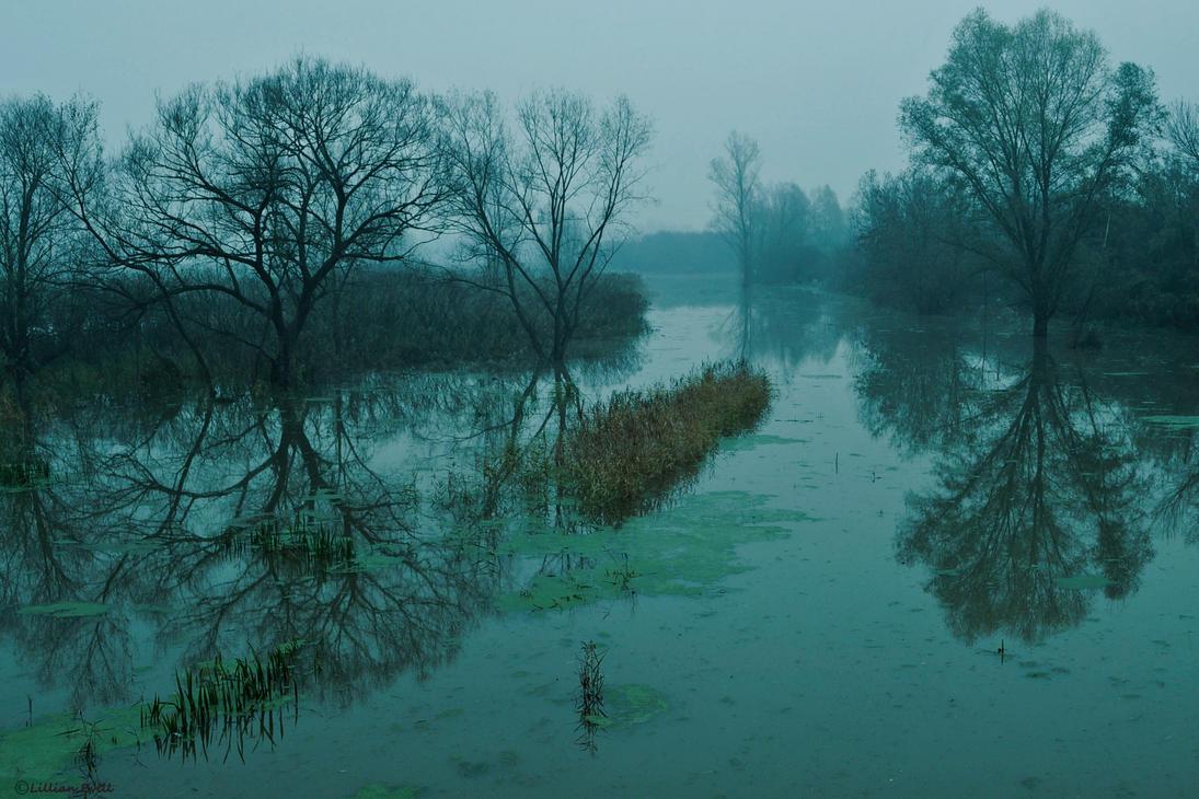Swamp by LillianEvill