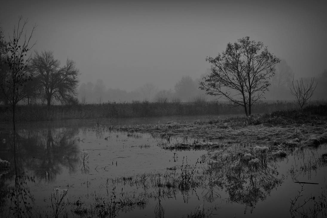 Into the Silence by LillianEvill