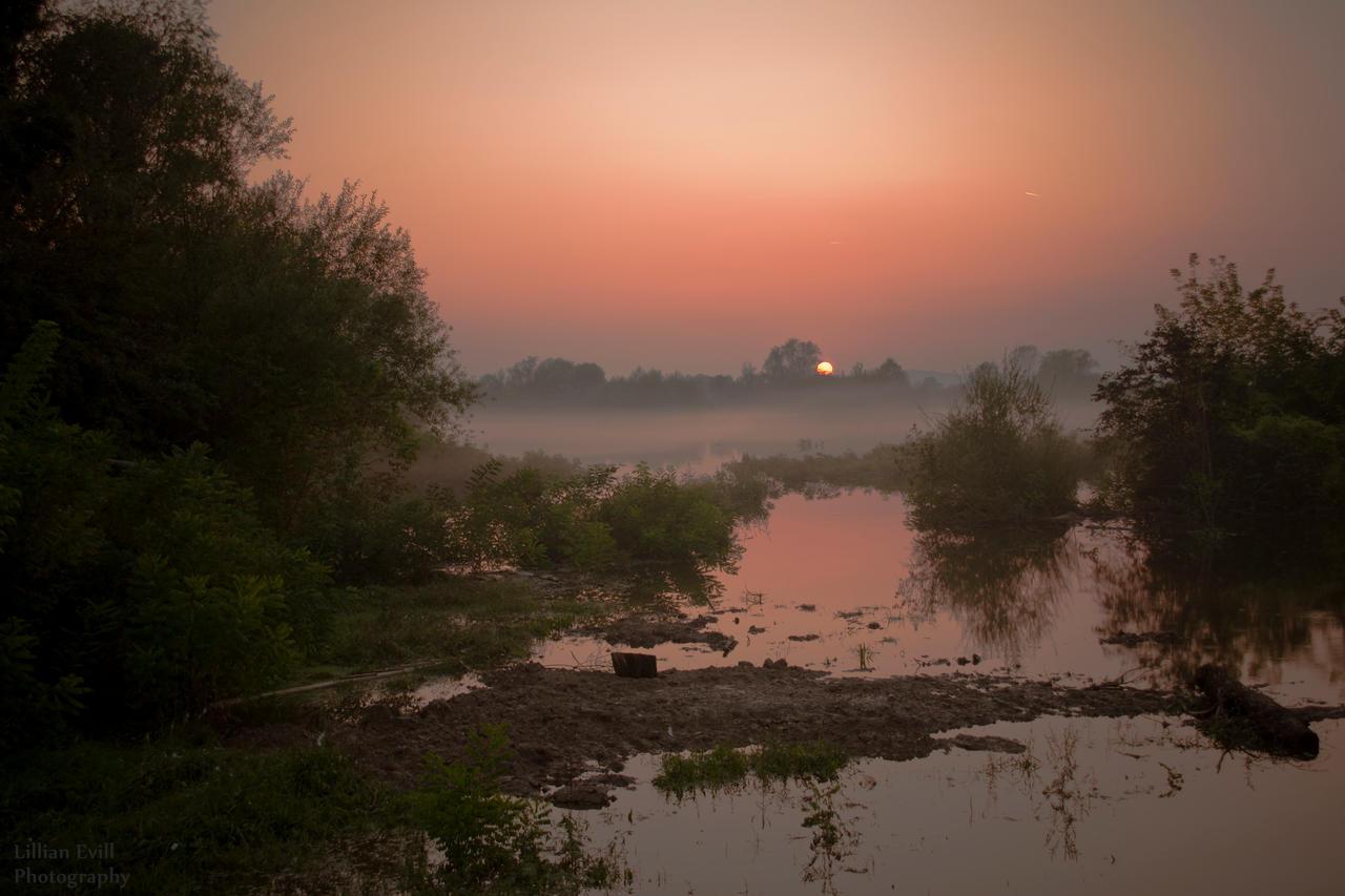 Foggy Sunset by LillianEvill