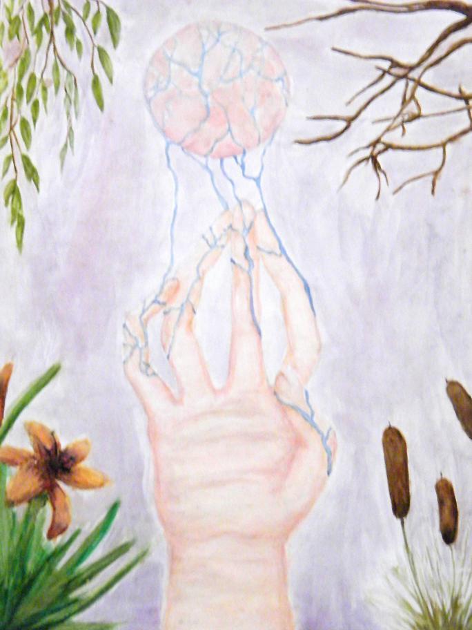 Natural Water Birth And Womens Wellness Center Yelp