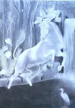wip unicorn water