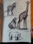 2013-07-22 Burgers Zoo zebra giraffe  sketch