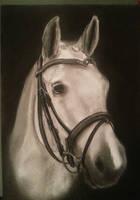 2014-01-07 wip horse